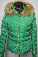Куртка зимняя женская на замке с капюшоном зеленая