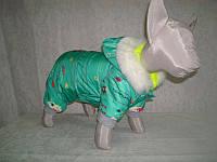Комбинезон для котов Кроха беби 20 х 20 (флис)