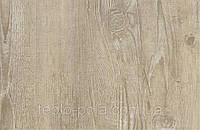 Wheat Pine -  винил на пробке, замковой пол Wicanders