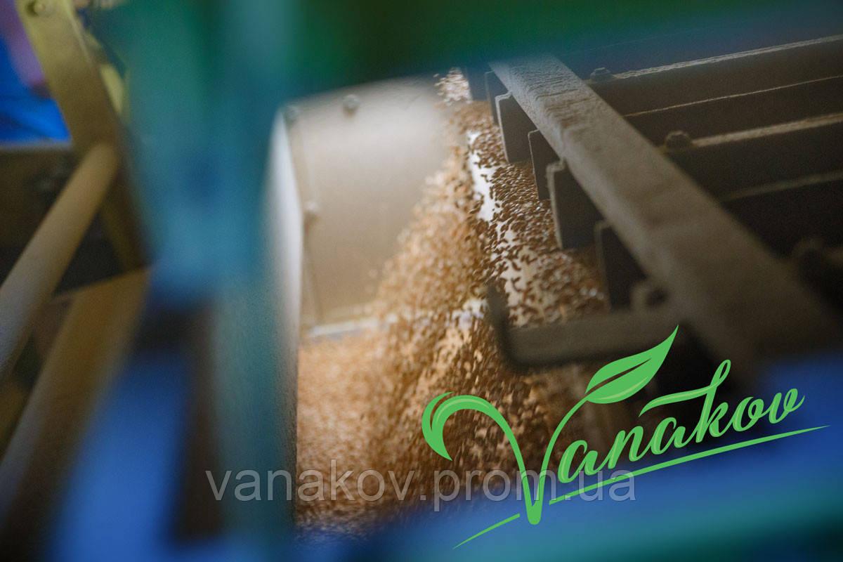 Очистка зерновых и масленичных культур - ФОП Ванаков в Херсоне