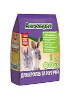 Акселерат для кролей и нутрий 1 кг кормовая добавка