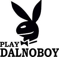 Виниловая наклейка на авто (play dalnoboy)  (от 15х15 см)