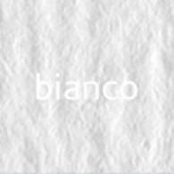 Картон Elle Erre А4 bianco 00 (белый)