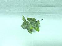 Ветка  зелени, 16см