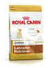 Royal Canin Labrador Retriever Junior 12кг- для щенков породы лабрадор ретривер