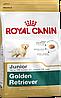 Royal Canin Golden Retriver Junior 12кг-корм для щенков голден ретривера до 15 месяцев