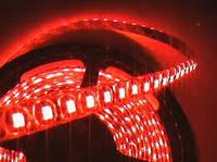 Лента светодиодная защищённая 120SMD(3528)/m 9.6W/m 12V 5m*8*0.22mm повышенной яркости IP65 Красная