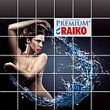 Металева водостічна система RAIKO Premium, фото 4