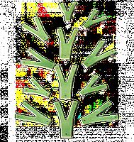 Детский скалодром «Невероятные веточки» Kidigo 1,6*1,3 м, фото 1