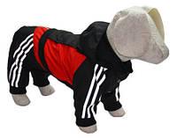 Костюм для собак Крутые 90-е такса 47х56 (плюш), фото 1