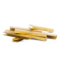 Скобы для пневмостеплера 20 мм Intertool PT-8220