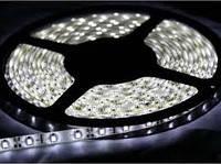 Лента светодиодная SMD 5050/ 60 LED на метр/ IP65 влагозащищеная / 20Lm/led / 14,4W / 12V / холодно белый