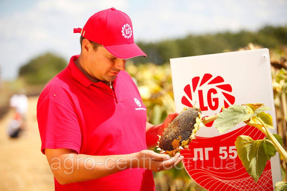 Семена подсолнуха ЛГ 5665М