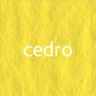 Картон Elle Erre А4 cedro 25 (лимонный)
