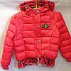 Детская демисезонная куртка для девочек оптом на 6-8 лет