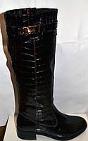 Сапоги высокие женские зимние кожаные под рептилию Hermes Oog0035