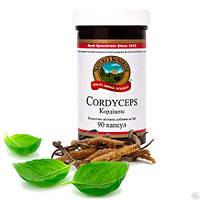 Кордицепс / Cordyceps NSP-улучшает работу щитовидной железы