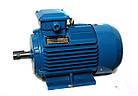 Электродвигатель АИР 100 S2, АИР100S2, АИР 100S2 (4,0 кВт/3000 об/мин), фото 2