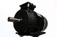Электродвигатель АИР 160 S2, АИР160S2, АИР 160S2 (15,0 кВт/3000 об/мин)