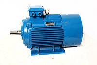 Электродвигатель АИР 180 M2, АИР180M2, АИР 180M2 (30,0 кВт/3000 об/мин)