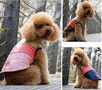 """Куртка для собак """"Voyage""""  ТМ DOBAZ. Одежда для собак."""
