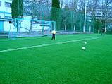 Футбольное поле искусственная трава, фото 3