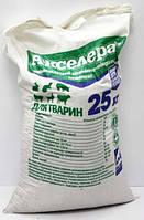 АКСЕЛЕРАТ для животных 25 кг кормовая добавка