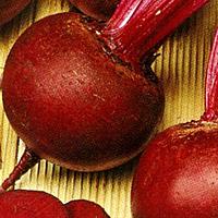 Семена свеклы Бордо 1 кг. Цезарь (Бритон)