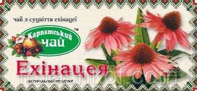 Карпатский чай, Эхинацея