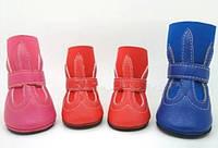 """Ботинки для собак """"JAM"""". Обувь для собак."""