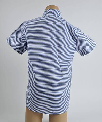 Сорочка поло для хлопчика, фото 2