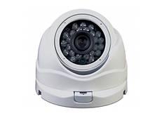 IP Видеокамера SVS-20DW2,4IP/36 POE