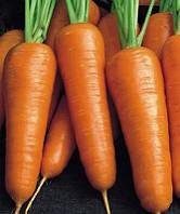 Семена моркови Борец F1, 100000 семян, Clause (Клоз),Франция