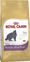 Royal Canin British Shorthair 2 кг