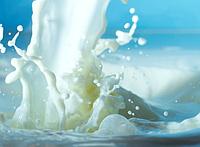 Сухое молоко