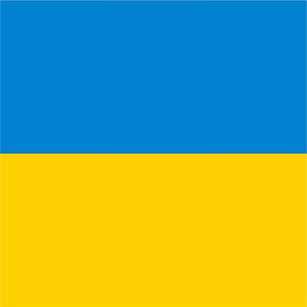 Флаг Украины - (2м*3м), фото 2