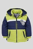 Куртка  осенняя для мальчика Goldy (38-ом-15)