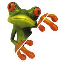 Наклейка лягушка с пальцами
