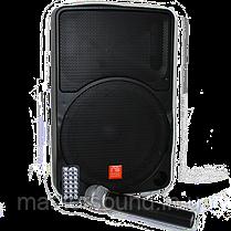 Портативная  акустическая система Maximum Acoustics Mobi.10