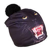 Зимняя шапка для  мальчика с принтом животных TuTu арт. 3-003121, фото 1