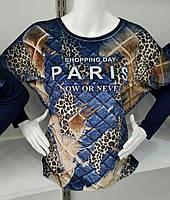 Kофточка с надписью Paris