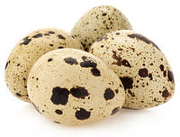 Чудо-яйца