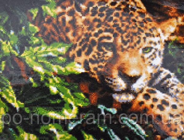 Алмазная вышивка Гулівер країна Леопард в джунглях (на подрамнике) (GU_198508) 40 х 50 см (На подрамнике)
