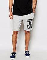 Шорты Adidas, адидас, серые, трикотаж, большое лого, в наличии, спортивные, стильные, ст50