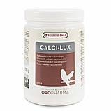 Versele-Laga Oropharma Calci-Lux Витамины для птиц - кальций в порошковой форме 500г, фото 2
