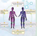 Влияние на здоровье человека( Инфракрасная отопительная пленка ) интересные статьи