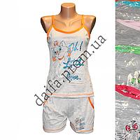 Женская котоновая пижама V49V  оптом со склада в Одессе.