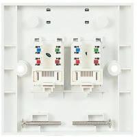 Рамка с модулями MOLEX FW 2xRJ45 568B UTP PowerCat 5e