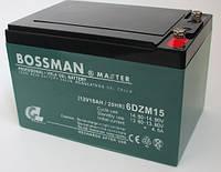 Аккумулятор BOSSMAN MASTER 6DZM15