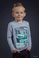 Трикотажный джемпер для мальчика ТМ Зиронька 222-16-18 р.92 серый